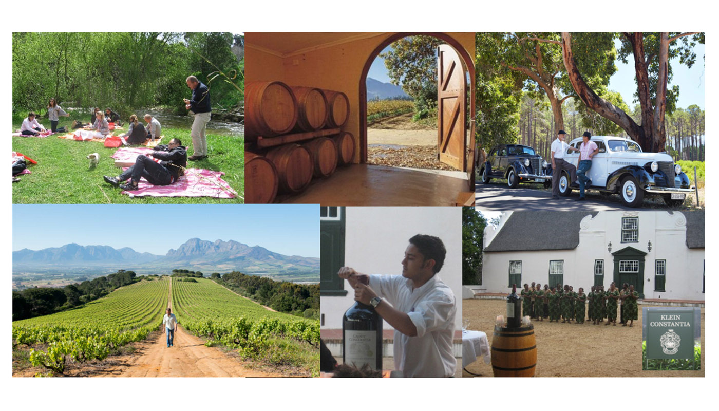 TOUR WINELAND WITH VINTAGE CARS – Picnic & tasting